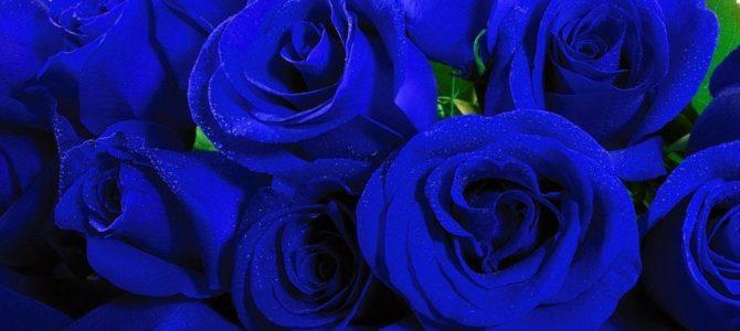 12.10.2018 – Milonga Color – niebieska milonga